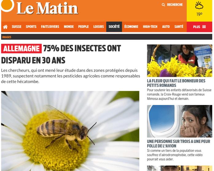 Tous les insectes vont disparaître - pétition