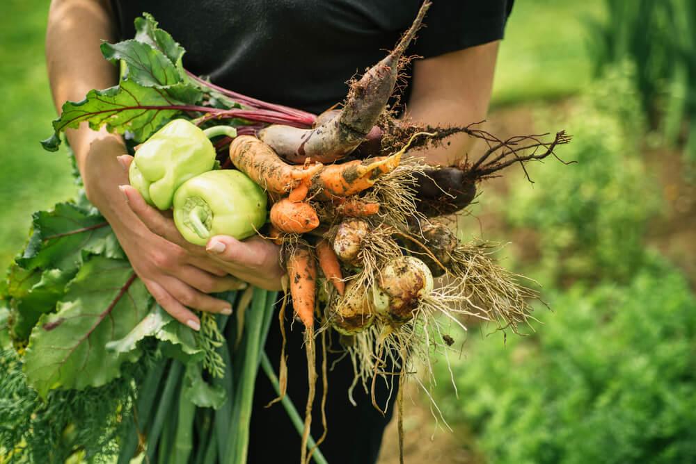 Soutien à tous les Agriculteurs Bio