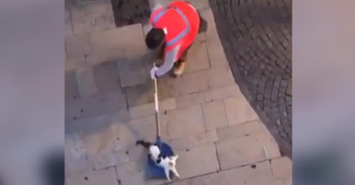 Les animaux ne sont pas des objets qu'on jette à la poubelle